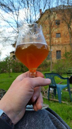Craft Beer APA Relaxing Time Beer Time Beerporn Craftbeer My Hobby Outdoors Polishcraftbeer Good Taste View Beerglass Teku