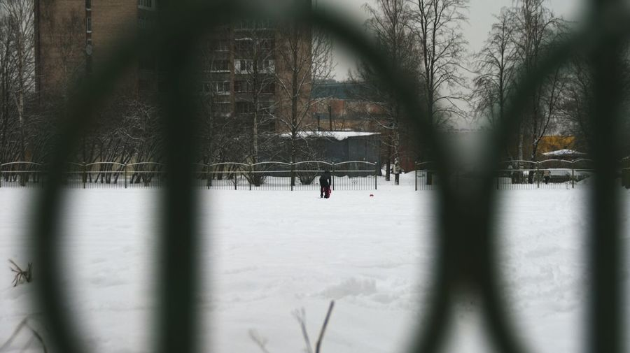 People on snow covered trees during winter