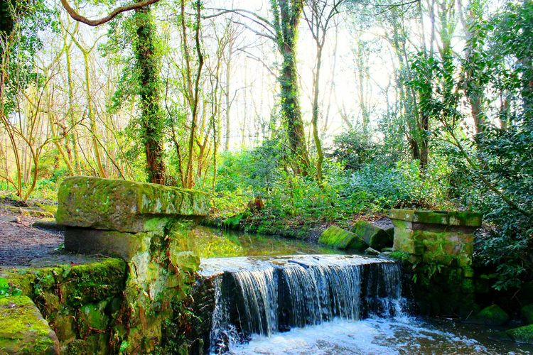 Showcase April Taking Photos Canon EOS 600D DSLR Waterfall #water #landscape #nature #beautiful Spring Colours Walking Around