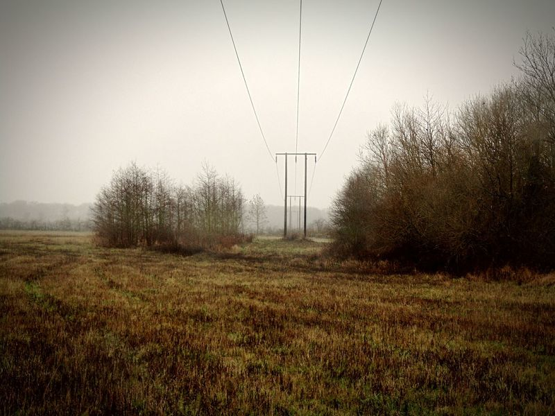 Wire View Telegraph Meadow Countryside Uk