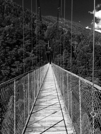 Straight away Mountain Bridge Panorama Italy Veneto Iğne Tree Brave Wood Perfect LiveOrDie First Eyeem Photo