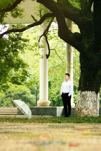 Tree Full Length Standing Businessman Men Portrait Thoughtful Posing Wearing