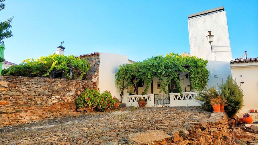 Pot Plants House Stone Alentejo Monsaraz Tree Clear Sky Sky Architecture Country House