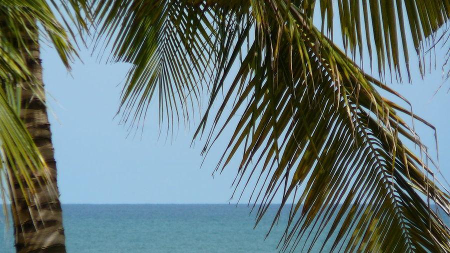 Benin Clear Sky