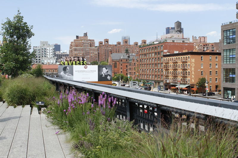 Architecture Building Exterior City Life Cityscapes Day High Line Park New York City Park Urban Skyline
