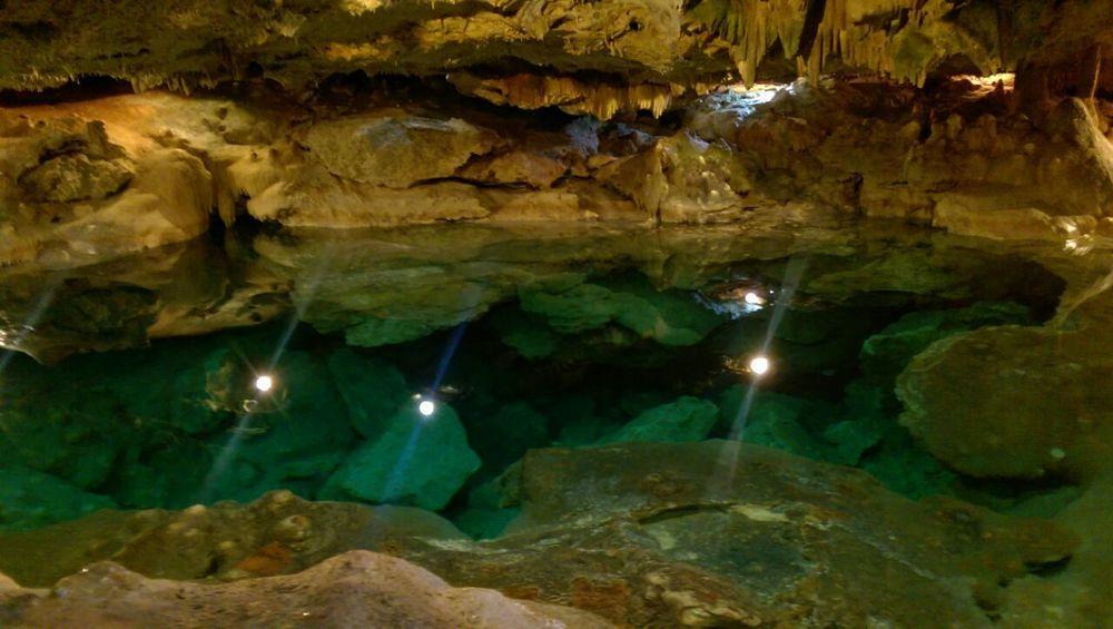Cenotes Mérida Yucatán Mexico Perspectives On Nature