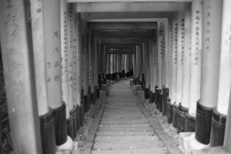 Japan Shrine Arcade Architectural Column Architecture Building Built Structure Ceiling Colonnade Corridor Day Diminishing Perspective Direction Empty Fushimi Inari Shrine In A Row Indoors  No People Repetition The Way Forward Travel Destinations vanishing point