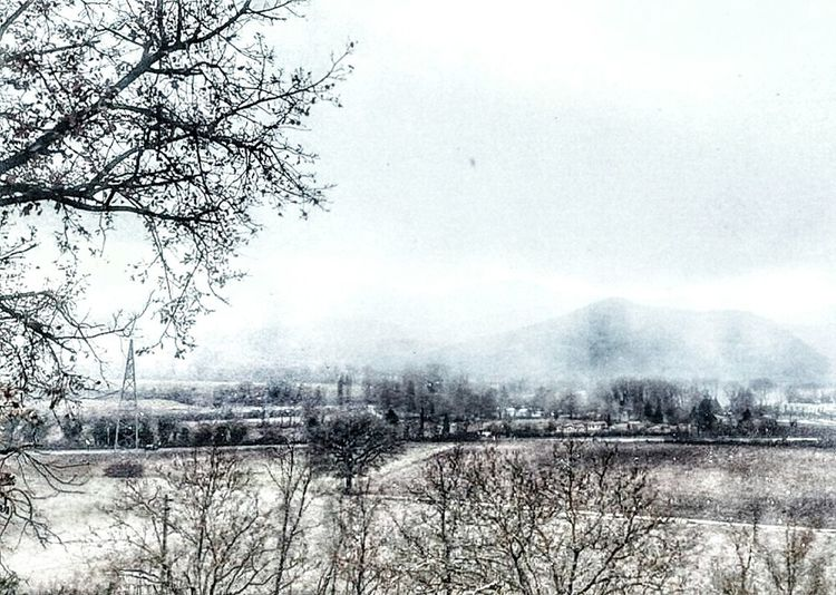 Snowing Appennino Umbro Marchigiano Inverno S3 Mini Mobilephotography Smartphone Photography Tree Snow Cold Temperature Bare Tree Winter Agriculture Water Rural Scene Field Sky Weather Snowfall Snowing Snowing