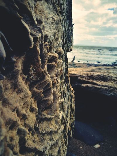 Sea Nature Beach Textured  Water Outdoors Beauty In Nature Close-up Horizon Over Water No People Sky Day Wave Wood Stump
