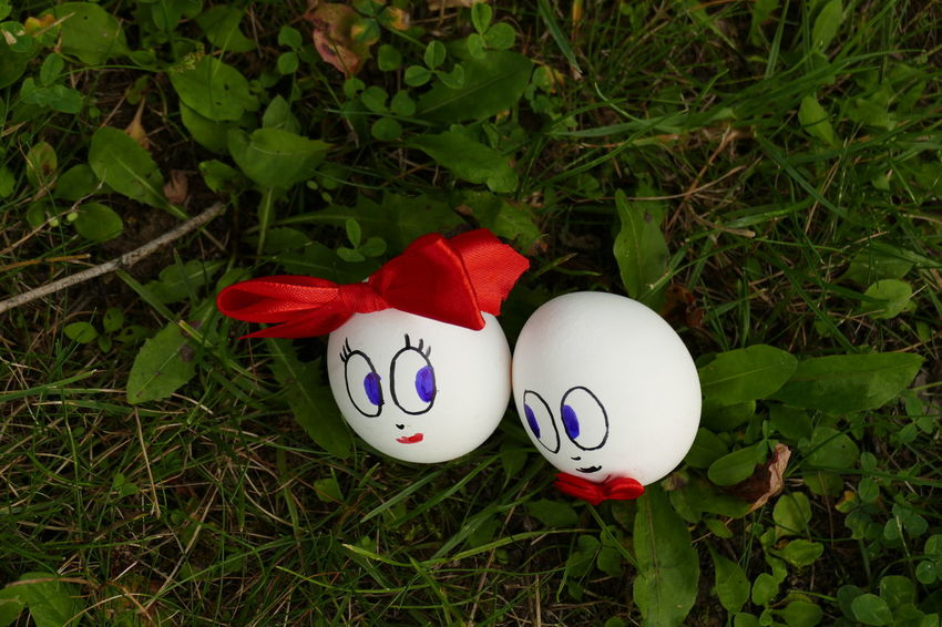 Elegant Engagement Food Love Groom Lady Love Man Meditation Nature Relationship Romantic Tranquility Wedding Woman Backgrounds Beauty In Nature Bride Close-up Day Eggs In Love Grass No People Together Together Forever Togetherness