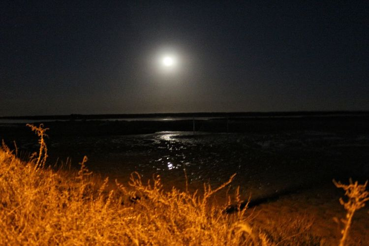At the moonlight Astronomy Space Moon Sea Star - Space Moonlight Heat - Temperature Full Moon Sky Landscape