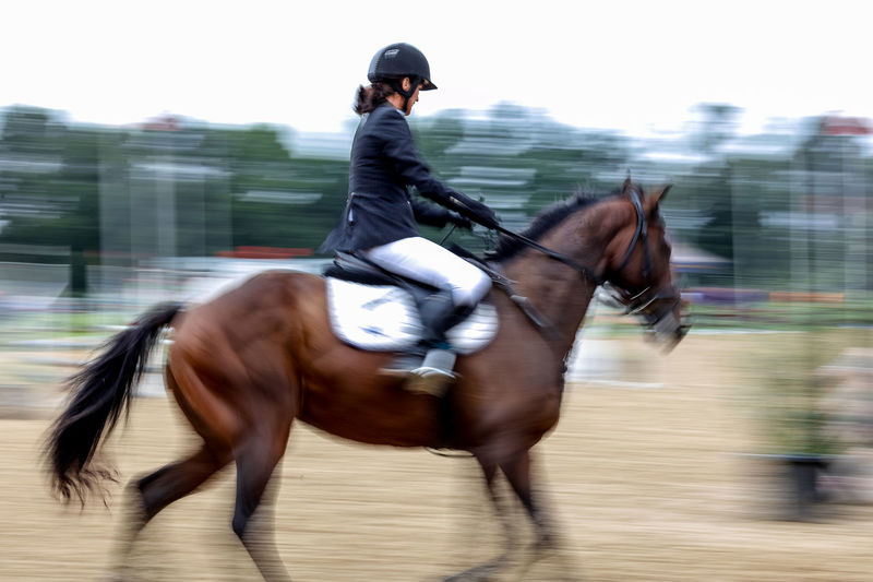 Action Horse Horse Jumping Horse Riding Horsejumping Horseriding Leisure Activity Lifestyles Movement Movement Photography Outdoors Riding South Africa Sport First Eyeem Photo