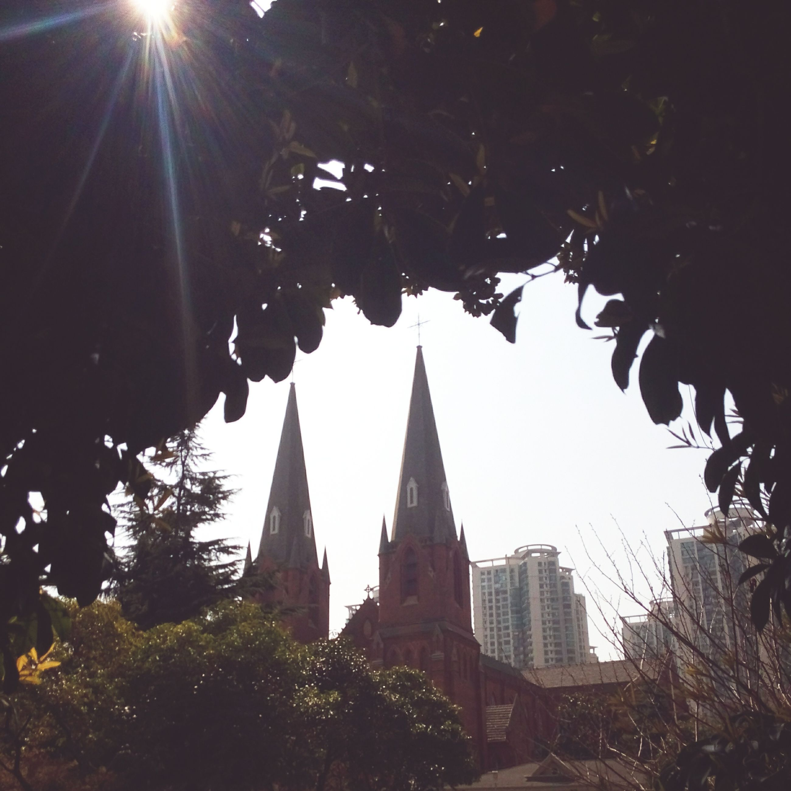building exterior, architecture, built structure, religion, place of worship, spirituality, low angle view, church, clear sky, tree, sun, sunlight, city, sky, steeple, branch, lens flare, cathedral