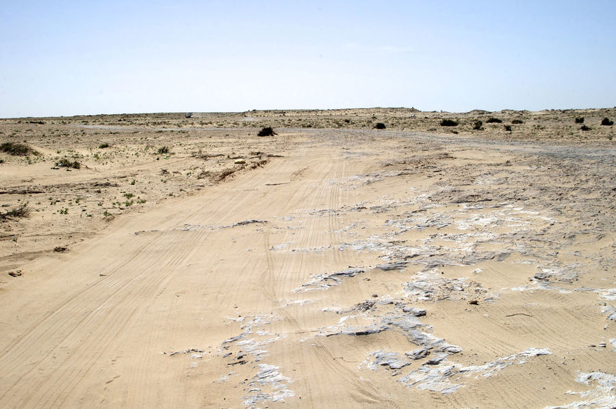 No mans land on the border between Western Sahara and Mauritania. West Africa Africa Arid Climate Barren Barren Landscape Landscape Mauritania No Mans Land Outdoors Sahara Scenics Western Sahara