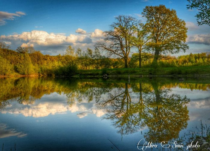 Water Reflections Taking Photos EyeEm Nature Lover My Obsession❤ EyeEm Gallery Getting Inspired Nature_collection Eye4photography  Clouds And Sky Walking Around Malephotographerofthemonth Hdr_Collection Landscape_Collection Landscape Tree_collection  EyeEm Best Shots Austria
