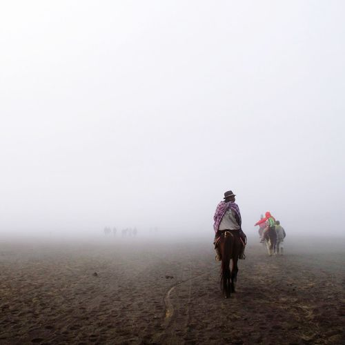 Rear view of man riding on horse at field during foggy weather