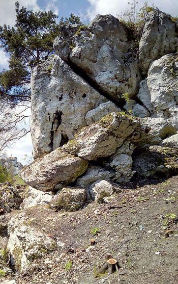 Rock Nature Jura Krakowsko Czestochowska Poland Polska Beauty In Nature