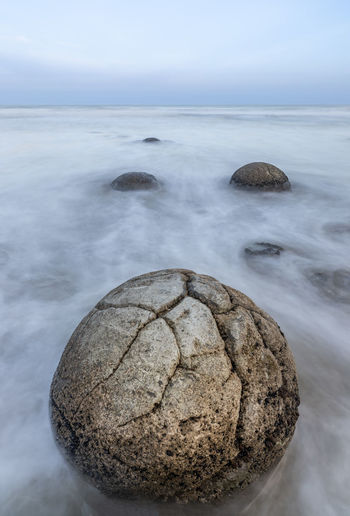 Moeraki Boulder with soft moving ocean waves Sea Beauty In Nature Water Sky Day Rock - Object Outdoors Rock No People Nature Motion Beach Tranquility Scenics - Nature Horizon Moeraki Boulders Boulder New Zealand Unusual Long Exposure Nature Prehistoric Close-up Travel Destinations
