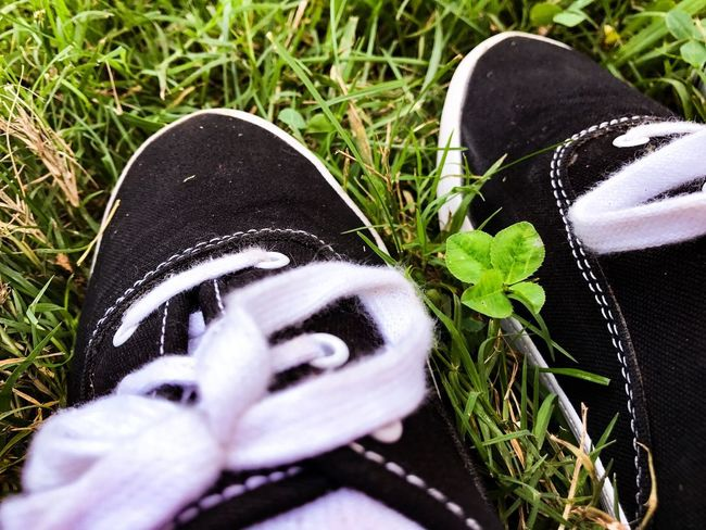 Shoe Grass Human Leg Black Color Low Section Human Body Part Pair Plant High Angle View Day Close-up Growth Real People One Person Outdoors People Four Leaf Clover