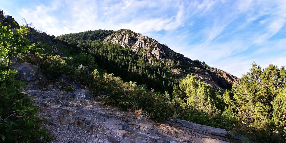 Mountain Outdoors Tree Day Landscape Beauty In Nature Cloud - Sky Rocky Mountain Range Tranquil Scene Hikingadventures Wasatch Mountains Scenics Green Color Summer WasatchFront Tranquility