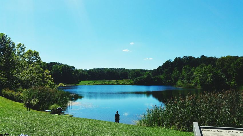 Solitide Lake Scenics Tranquil Scene Beauty In Nature Standing Water Calm Remote Outdoors Day Green Color Clear Sky Growth First Eyeem Photo