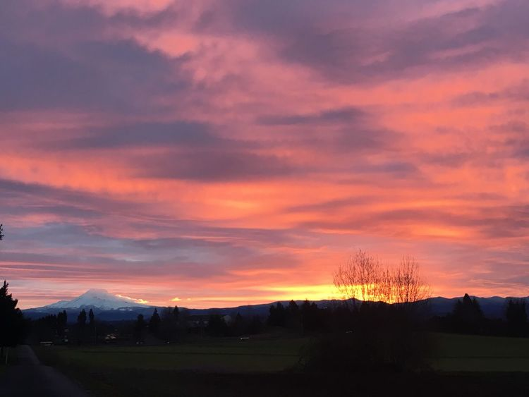 Landscapes With WhiteWall MtHoodOregon Colorful Sky Sunrise