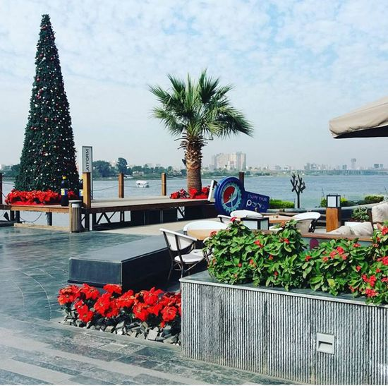 Cairo Egypt Outdoors Christmas Tree Sky And Clouds Sky Clouds Nile River The Nile River Egypt Chrismas NewYear