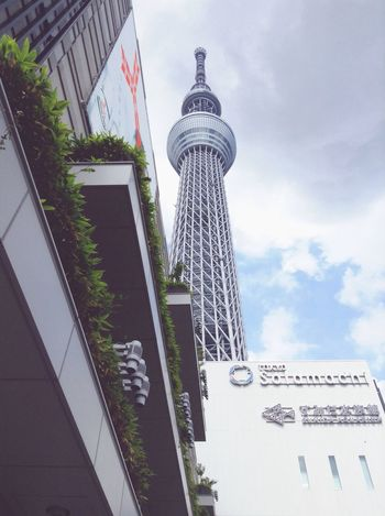 Tokyoskytree Tokyo Tower