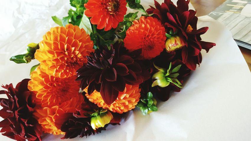 Naturephotography Nature_collection Blütenzauber Sommerfeeling Blütenpracht Pflanzenliebe Nature Markt Blumenfotografie Blumenstrauß Rot Orange