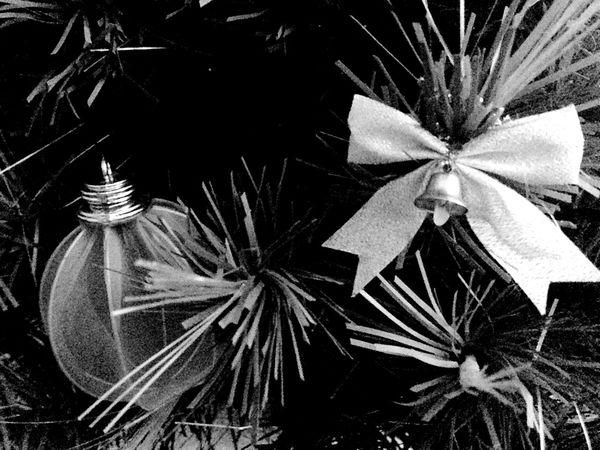 NewYear Christmas Followme Followback Follow4follow Followforfollow Like4like Likeforlike Taking Photos Christmas Tree