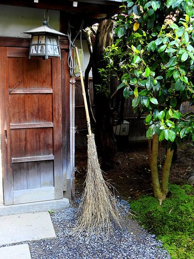 Broom Architecture Built Structure Building Exterior Plant Building Nature No People Entrance