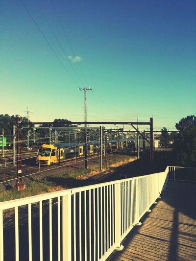 Train Railway Station Railway Bridge Autumn @sydney Australia 💐 instagram : jihyunkim1004