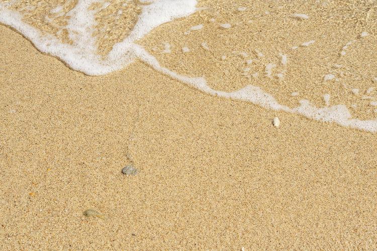 Beach Brine