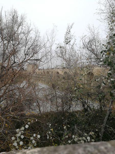 Puente Romano De Cordoba Cordoba Spain Guadalquivir Amanecer