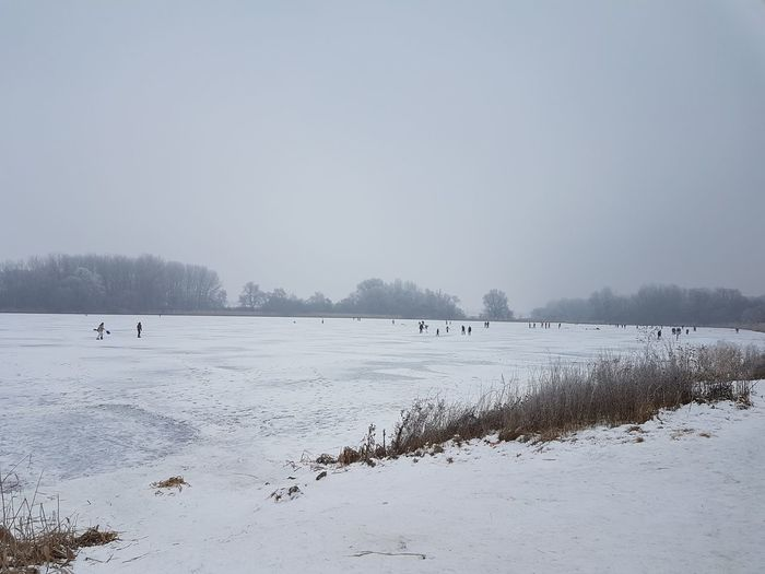 Beauty In Nature Budapest, Hungary Cold Temperature Ice Lake Nature Outdoors Skate Snow Snowing Tree Winter