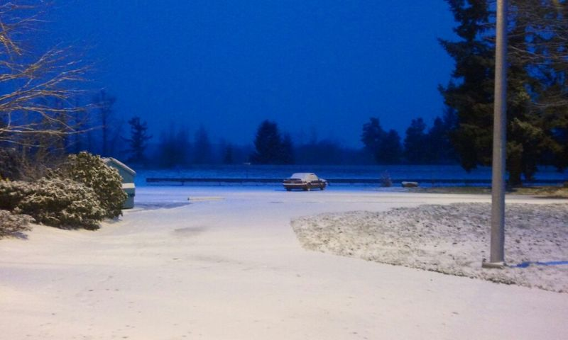A bit of snow. Fun driving home in an hour or two. Nature_collection Hi! Hanging Out Eye4photography