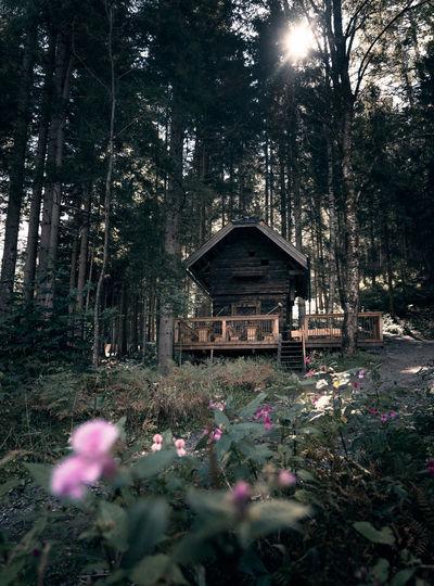 A cute cabin at
