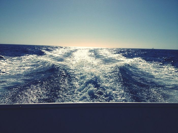 Taking Photos Sail Away, Sail Away ... Looking For Something ...