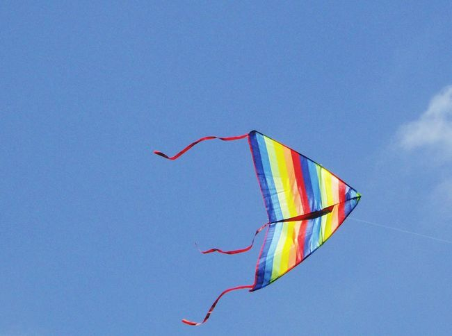 Flying A Kite Kiteflying Vivid Colours