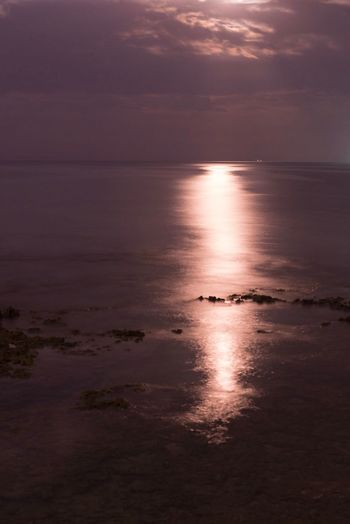 Moonlight Beauty In Nature Happy Hour Photos Dark OKINAWA, JAPAN Okinawa Eyeemphotography Night Lights Nikon Nikon D600 D600
