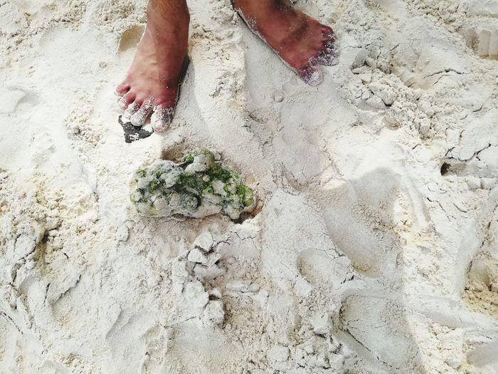 low section beach sand Standing human leg men barefoot Low Section Beach Sand Standing Human Leg Men High Angle View FootPrint Human Foot Human Feet Feet Flip-flop Foot