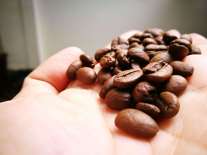 Close-up of hand holding roasted coffee beans