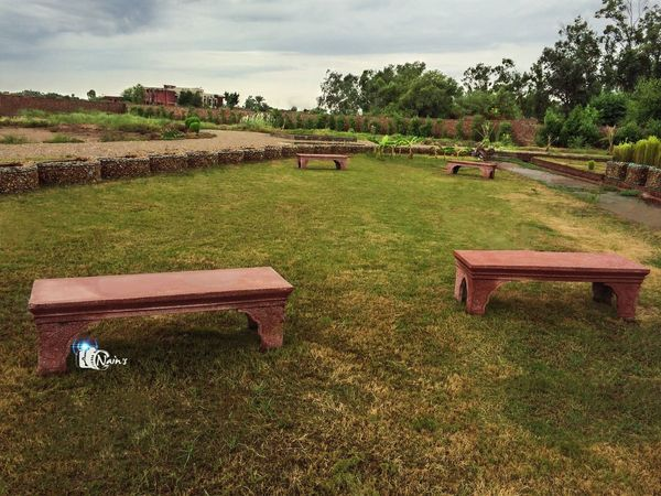 Benches at Garden... Tree Sky Grass No People Outdoors Nature Day Landscape Architecture Beauty In Nature Garden Grass Green Nikkon Tree Plant