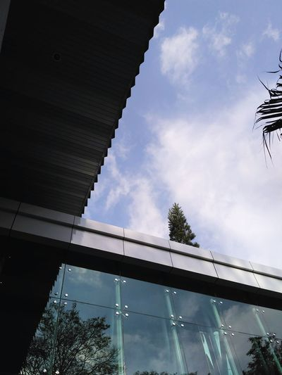 New building at my campus. Outdoors Sky No People Day Nature Tree EyeEm Centraljava Indonesian Indonesian Street (Mobile) Photographie Salatiga Minimalism Minimal Nature Building Buildings Buildings Architecture Architecture Uksw Balairung Bu Clouds Mood Forsale Indonesianpeople