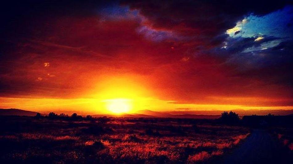 Nevada Nevadasunset Desertlife Winnemucca Winnemuccanv Northennevada Lovethedesert Desertlove Sunset Desertsunset Explorenevada Realnevada Feelingprettygoodtoday Lovemyhome Lovemeansnevada BeautifulSunset