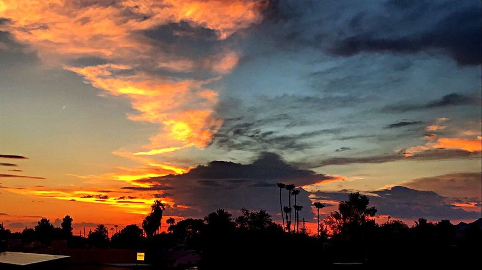 Mother Nature at her best. Cloud - Sky Silhouette Sky Dramatic Sky Orange Color Beauty In Nature No People Nature Tree Scenics Outdoors Architecture Day