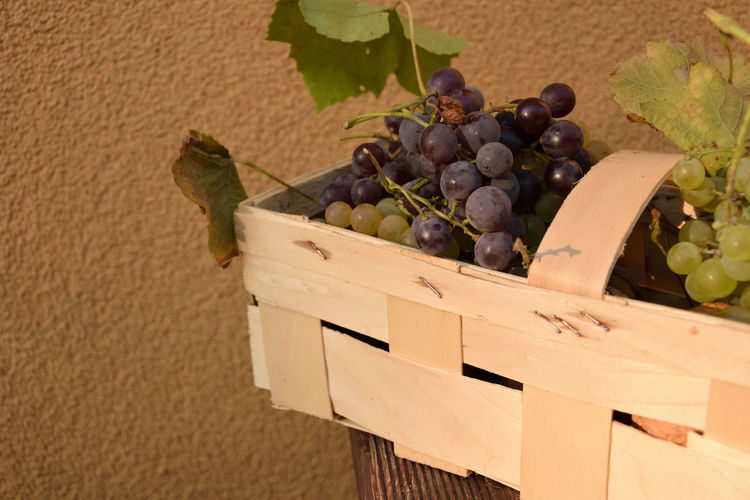 Basket with grapes - closeup Grapes Fruit Food And Drink Healthy Eating Food Leaf Grape Freshness Plant Part Wellbeing Box Container No People Nature Close-up Plant Crate Red Grape Day Wall - Building Feature Ripe Box - Container Winemaking