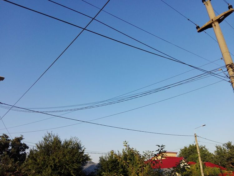 Cable Wires Cables And Wires Cables Electricity Pylon Sky Low Angle View No People Outdoors Electricity  Power Line  WOLFZUACHiV Photography WOLFZUACHiV Photos Wolfzuachiv Veronica Ionita Eyeem Market On Market Huawei Photography No Recognizable People Nature Bird Tree Day Wires In The Sky Wires And Sky