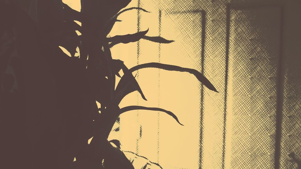 Pixlr Beautiful Edited Pastel Power Vintage Shadow Getty Images Getty+EyeEm Collection@sekharchinta, Hyderabad India