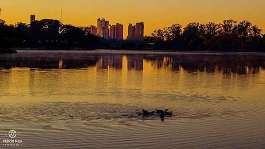 Saudades de casa ( Londrina ) Londrina Londrinaofficial Londrinero Londrinando Paraná Tonarpc Nikonphotography Nikon Landscape Jardimbotanicolondrina Governodoparana Summer Photo Photographer Followme USA Divinafoto Divinafotografia Words Wordw Ig_brazil Bike LagoIgapó LagoIgapó Londrina prefeituradelondrina ciclovia